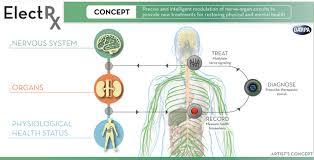 electric body