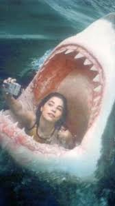 Shark Attack selfie