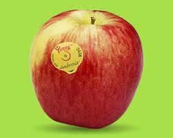 ambrosia apple