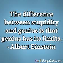 Stupid 1